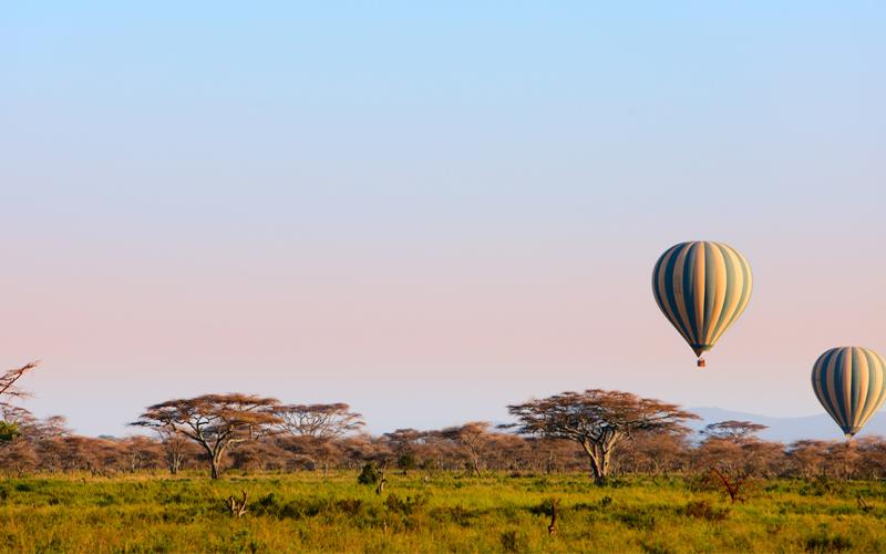 Karibu safari (122)_webb500