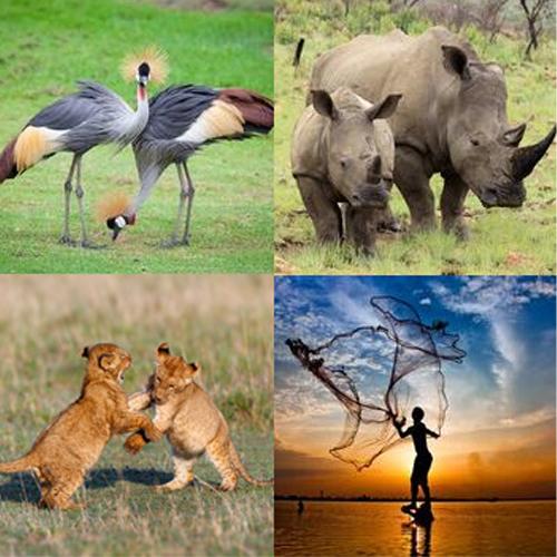 Tanzania Kenya_kollage1_webb500