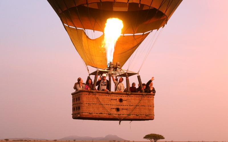 karibu safari (78)_webb500