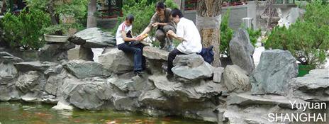 shanghai-yuyuan_175